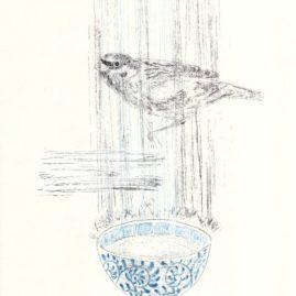 Sparrow&Wan
