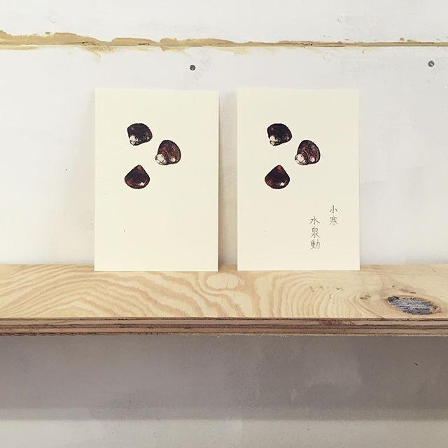 shijimi clams #illustration #72seasons #printmaking #printmakingart #mimeograph #hanga