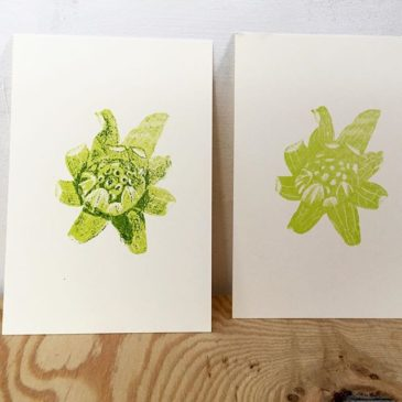 Butterbur sprout(printmakig process/take1)#printmaking #mimeograph #hanga #printmakingart #illustration #72seasons