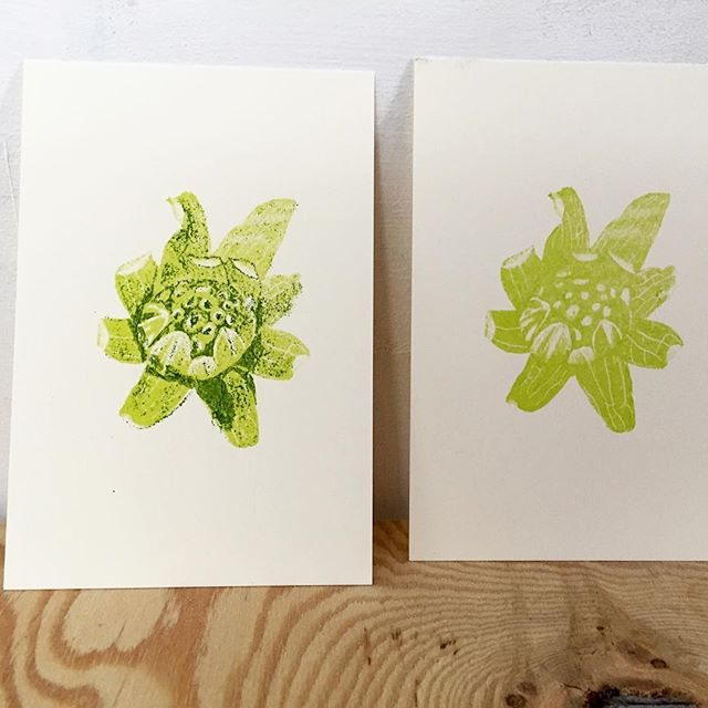 Butterbur sprout(printmakig process/take1)#printmaking #mimeograph #hanga #printmakingart #illustration #72seasons