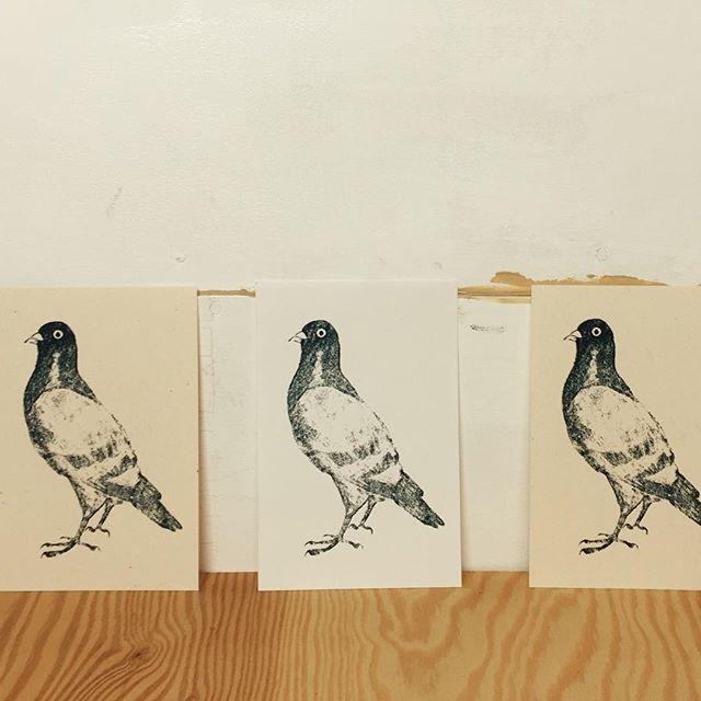 Pigeon #mimeograph #printmaking #版画 #イラスト #XBヤスリ #コピック還元法 #illustration