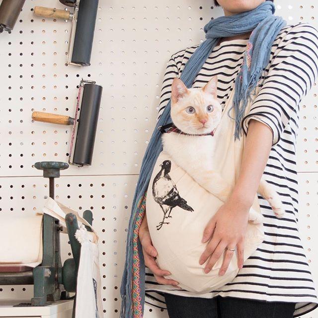 この鳩ショルダーは、だっこをねだる猫ちゃんスリングとしても使えます。ちなみにこの子は5キロ。#ガリ版 #謄写版 #グッズ #mimeograph #printmaking #goods