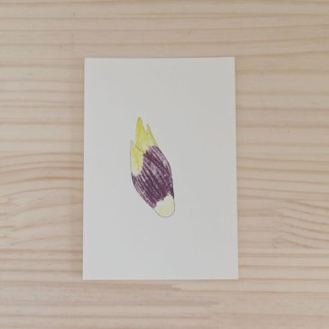 Myoga #printmaking #mimeograph #hanga #printmakingart #illustration #72seasons